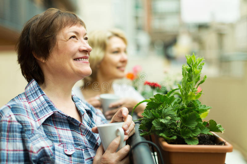 Download Two Mature Female Drinking Tea Stock Photo - Image: 43615864
