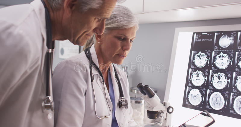 Two mature white scientists reading a tablet royalty free stock photo