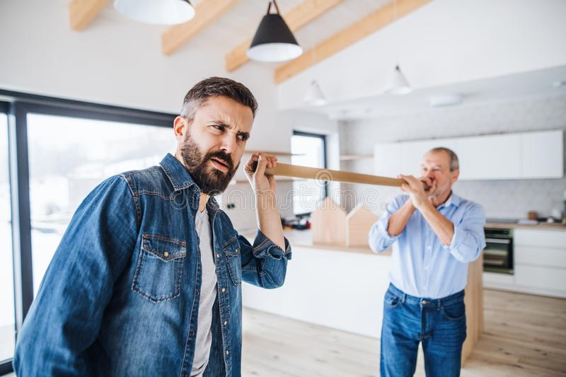 Two men having fun when furnishing new house, a new home concept. Two cheerful men having fun when furnishing new house, a new home concept royalty free stock photo