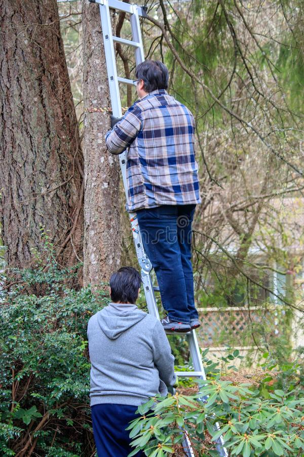 Two men hold ladder and climb for job stock photos