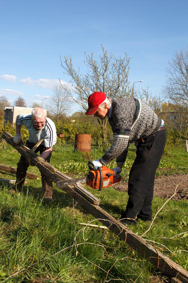 Download Two men sawing old logs stock image. Image of leisure - 26597781