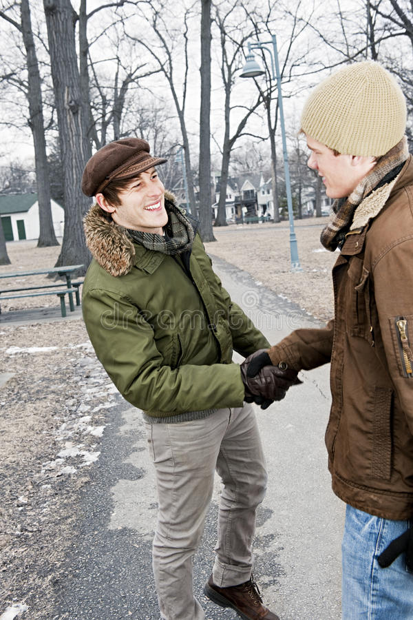 Download Two Men Shaking Hands In Park Stock Image - Image: 32196803