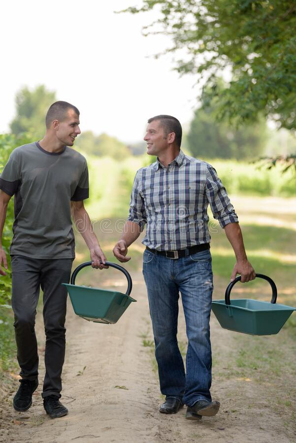 Two men shaking in vineyard stock photography