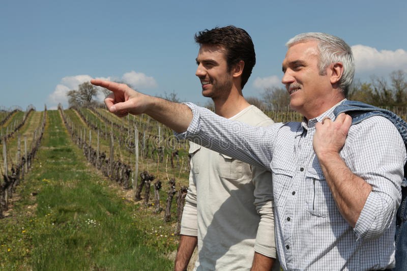 Download Two men on wine tour stock photo. Image of crop, landscaped - 23295058