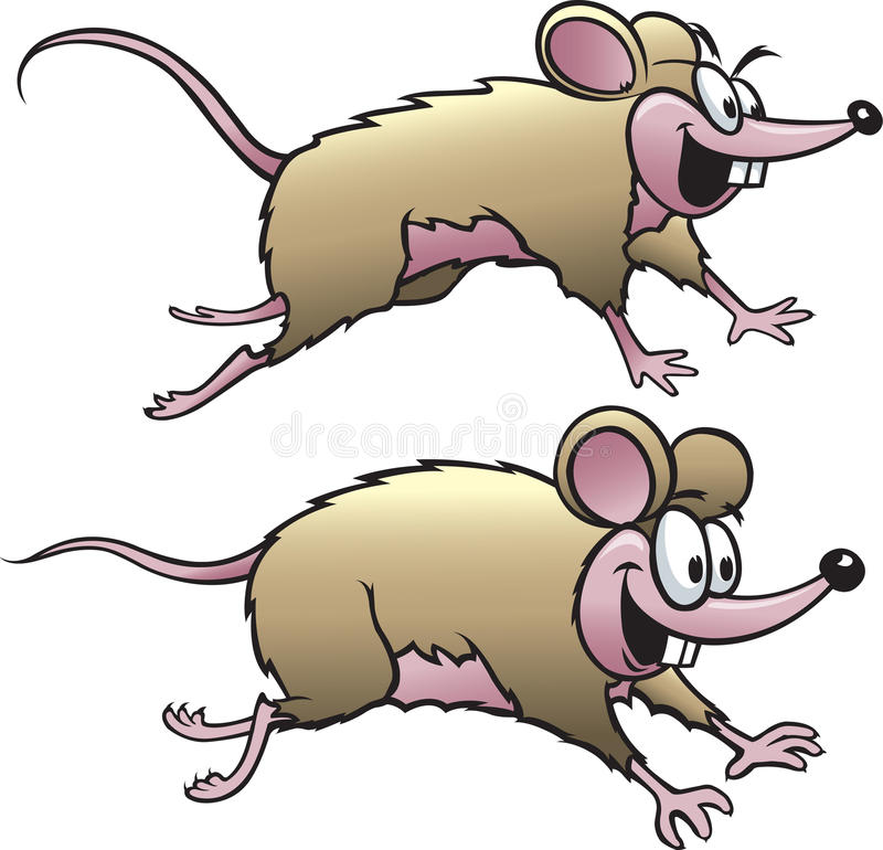 Two Mice. Two happy cartoon mice. Vector and high resolution jpeg files available vector illustration