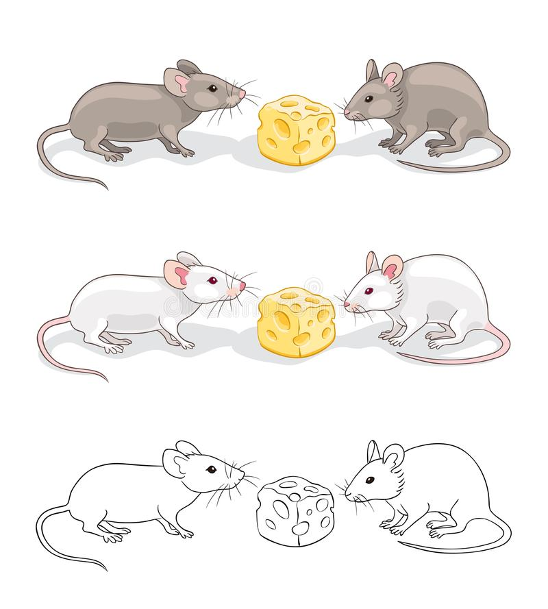Two mice with a piece of cheese vector illustration
