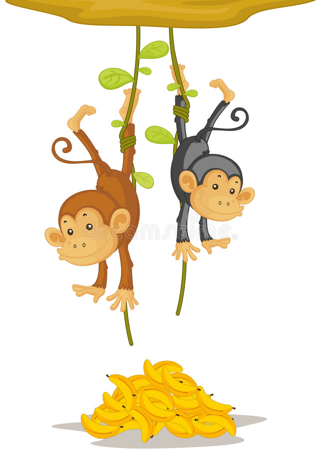 Download Two monkeys stock vector. Image of fruit, grey, drawing - 8957503