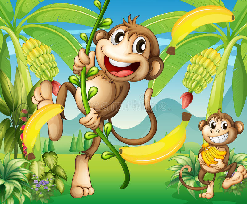 Two monkeys near the banana plant vector illustration