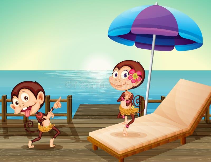 Two monkeys at the wooden bridge vector illustration