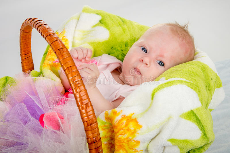 The two-month baby lying in a basket on a blanket. A two-month baby girl Europeans lies in a basket on a soft blanket royalty free stock photos