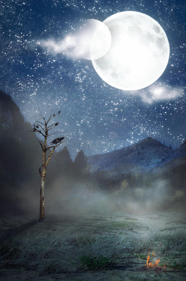 Two moons over alone withered tree. Starry misty sky with two moons over night forest edge. Crow sits on withered tree. One small bonfire burns in foreground royalty free stock image