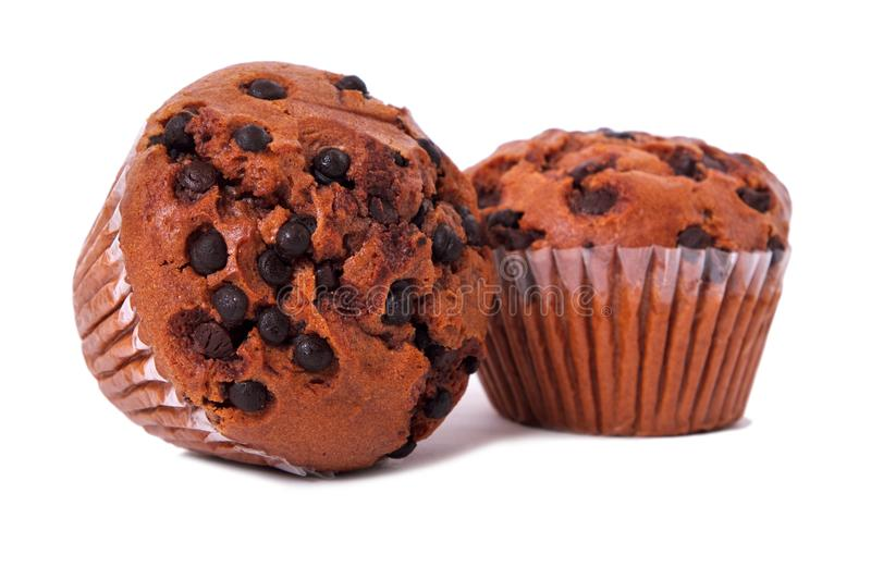Two muffin chocolate chip cup cakes white background royalty free stock image