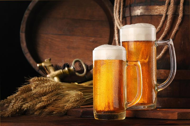 Two mug of beer .With wheat and barley and barrels spikes on bakcground.Still life stock image