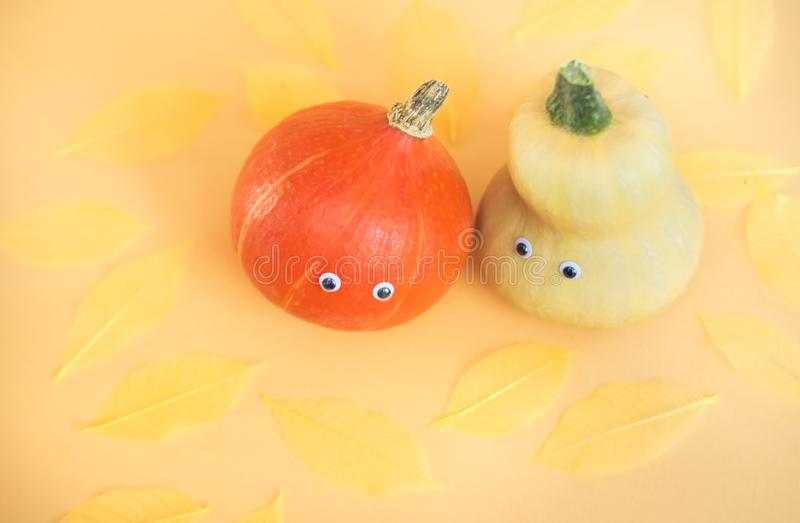 Halloween orange background. Two multicolored pumpkins on vivid trendy orange background. Halloween funny holiday concept stock image