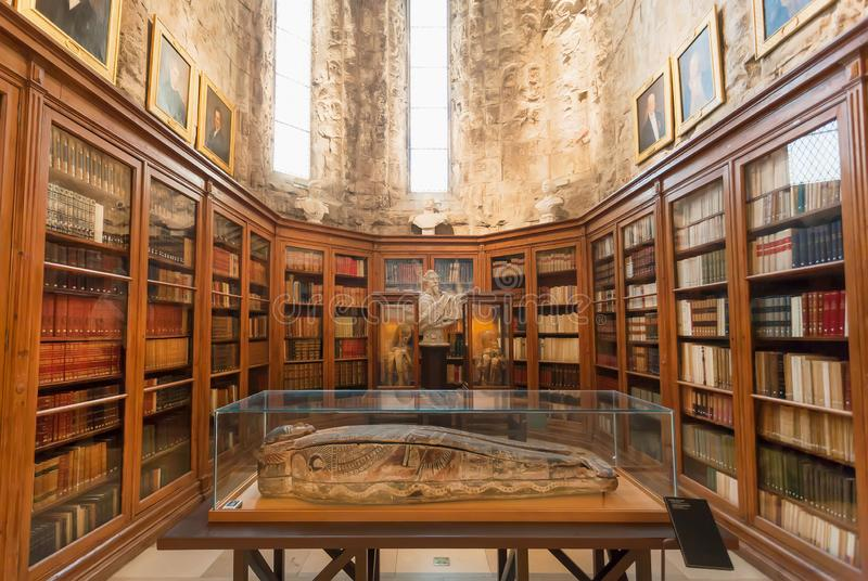 Two mummies and an Egyptian tomb inside the Archaeological Museum with vintage books stock photo