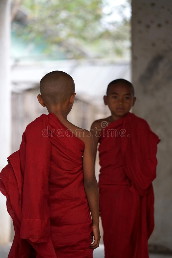 Two novice Myanmar royalty free stock photography