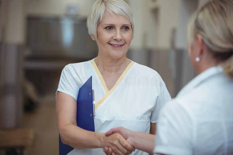 Two nurse shaking hands in corridor royalty free stock photography
