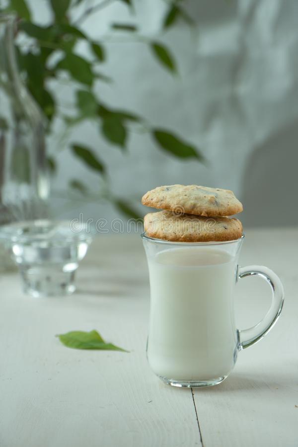 Two Oatmeal cookies with small glass of milk at wooden background, light and white photography in a rustic style. Oatmeal cookies with a glass of milk, light and royalty free stock photos