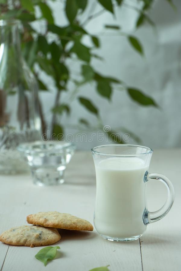 Two Oatmeal cookies at wooden background, light and white photography in a rustic style. Oatmeal cookies with a glass of milk, light and white photography in a stock photography