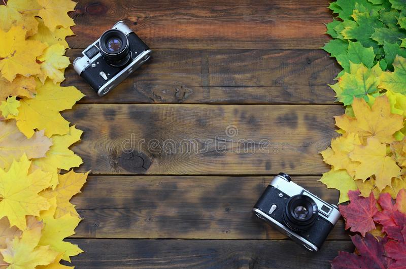 Two old cameras among a set of yellowing fallen autumn leaves on a background surface of natural wooden boards of dark brown colo. R stock image