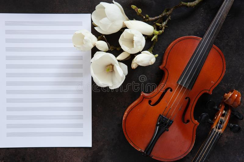 Two Old violins and blossoming magnolia brances on the white note paper. Top view, close-up.  stock photos