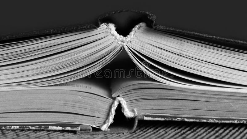 Two open books black and white royalty free stock photo