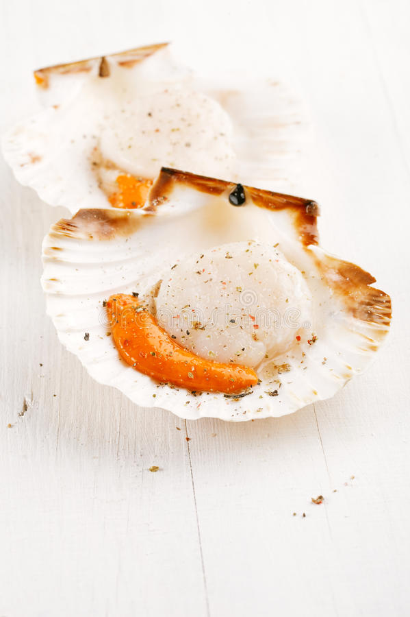Two open scallops with salt and pepper royalty free stock photos