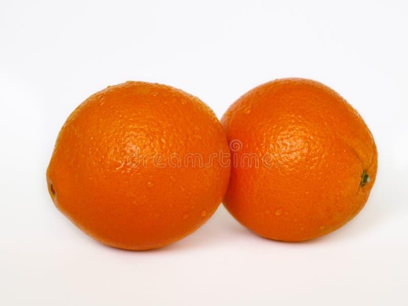 Two orange on white background. stock photo
