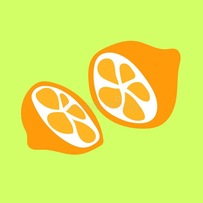 Two oranges on the green background. Vector illustration royalty free illustration