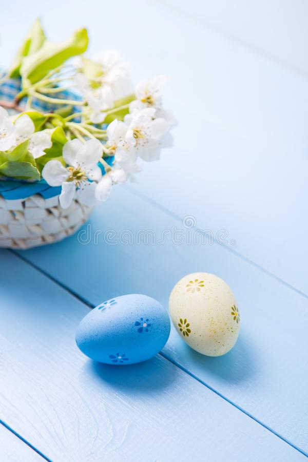Two painted blue and yellow Easter eggs near basket with white spring flowering branch on light blue background stock photography