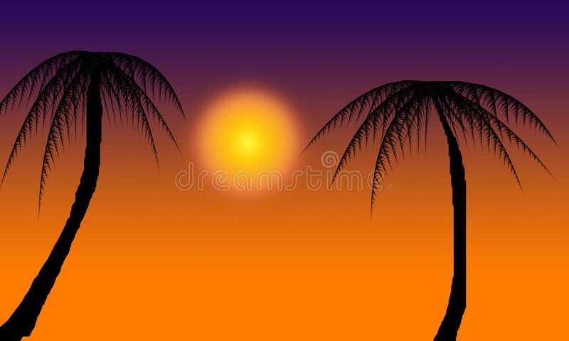 Download Two Palm trees stock photo. Image of silhouette, beautiful - 1960376