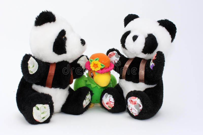 Two pandas and a parrot royalty free stock photography