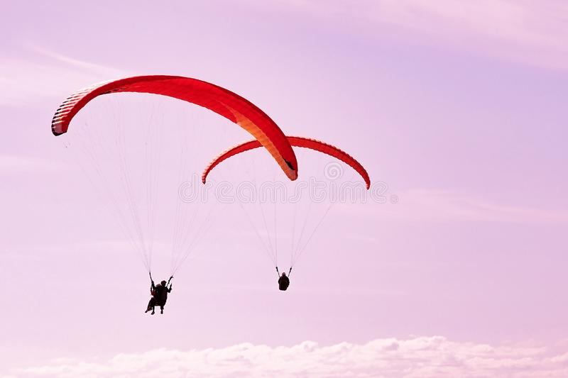 Two paragliders in pink sunset stock image