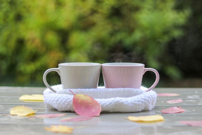 Two pastel cups with hot tea in white knitted scarf on wet table with pink and yellow leaves after rain. In garden outside. Warming drink together. Hello autumn royalty free stock photo