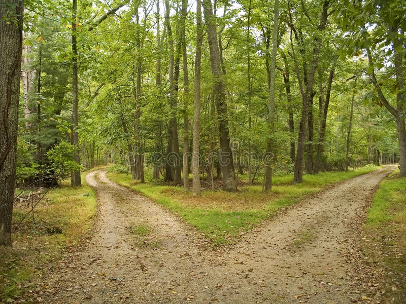Two Paths royalty free stock photography