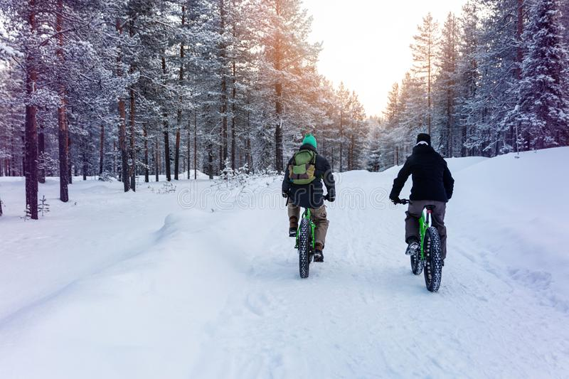 two people with fat bikes riding snowy winter forest trail stock photography