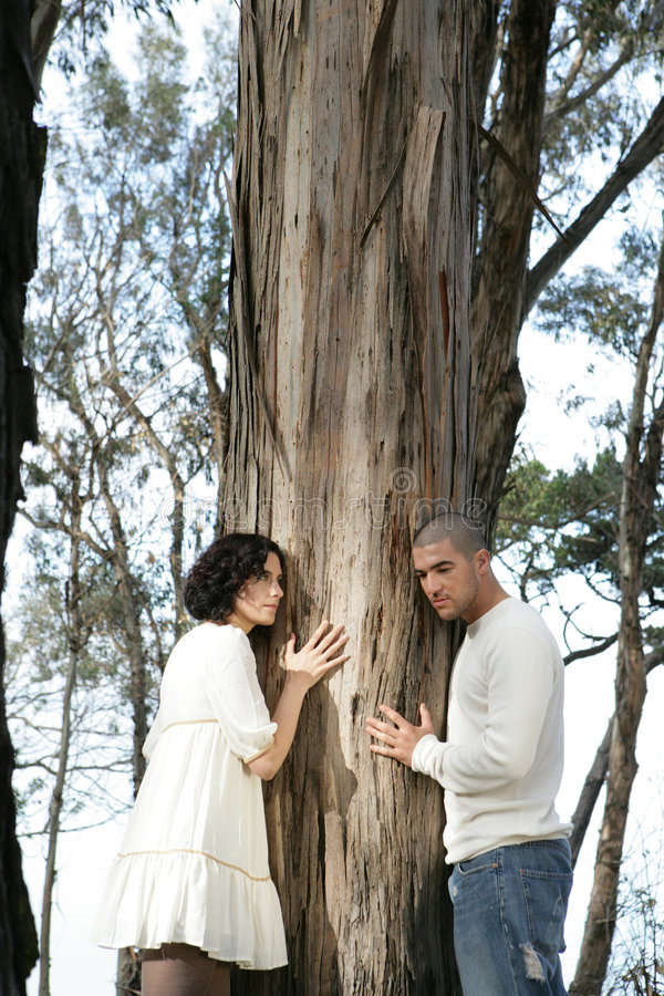 Two People Hugging a Tree stock photo
