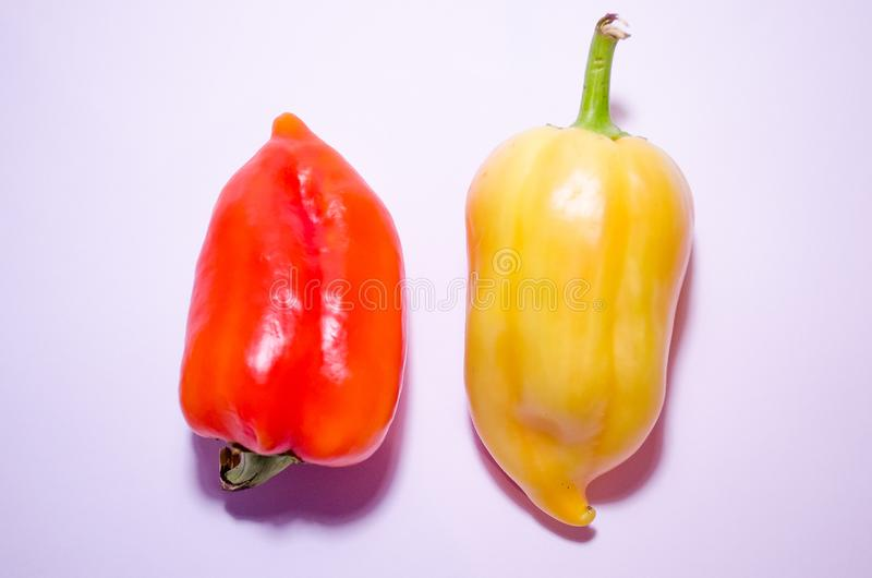Two peppers on a white background are parallel. Paprika pepper. Bell pepper. Healthy food. Recipes and cooking. Natural healthy stock photos