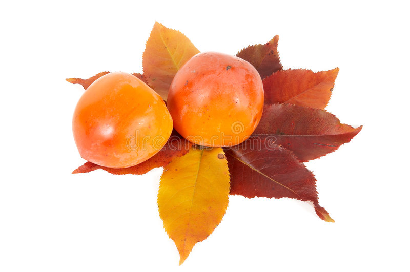 Download Two Persimmons And Autumn Leaves. Stock Image - Image: 6936303