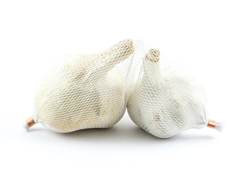 Two pieces of garlic in a plastic textures wrap on a white background royalty free stock photography