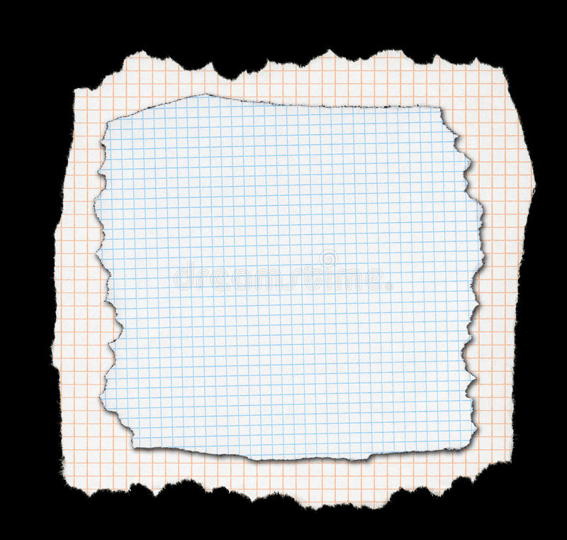 Two pieces of torn squared paper