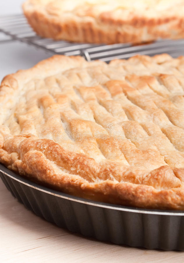 Download Two pies stock photo. Image of background, meal, food - 11920804