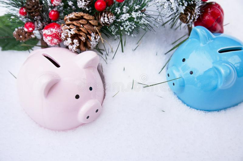 Two pig piggy Bank and spruce branch with red berries and a lump in the snow, Christmas holiday. Money concept stock photos