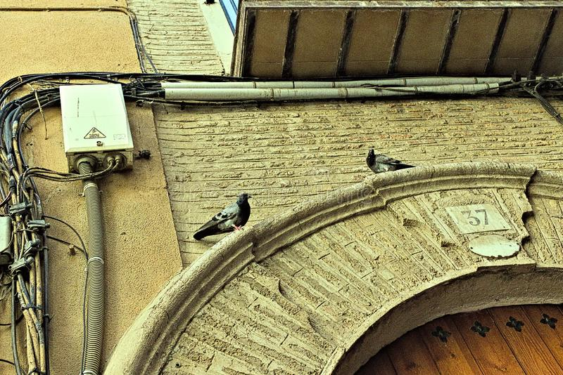 Two pigeons above the entrance to the tenement house. royalty free stock image
