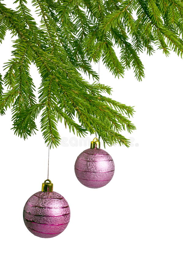 Free Two Pink Christmas Balls On Fir Tree Stock Images - 17262144
