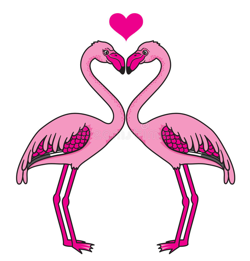 Download Two pink flamingos in love stock vector. Illustration of birds - 30405272