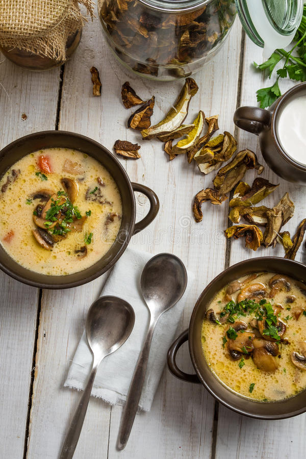 Two plate of mushroom soup stock image