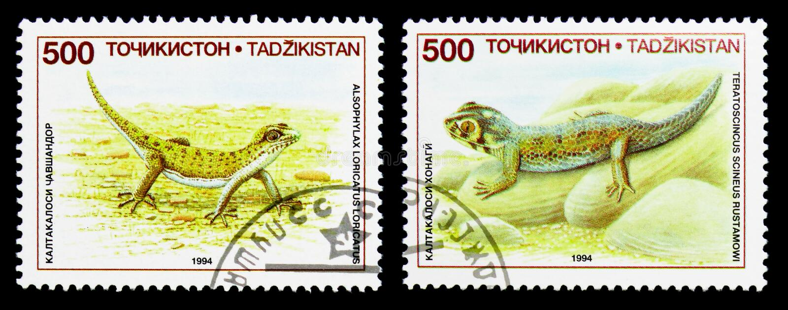 Two postage stamps printed in Tajikistan from the Lizards serie, circa 1995. MOSCOW, RUSSIA - NOVEMBER 26, 2017: Two postage stamps printed in Tajikistan from stock images