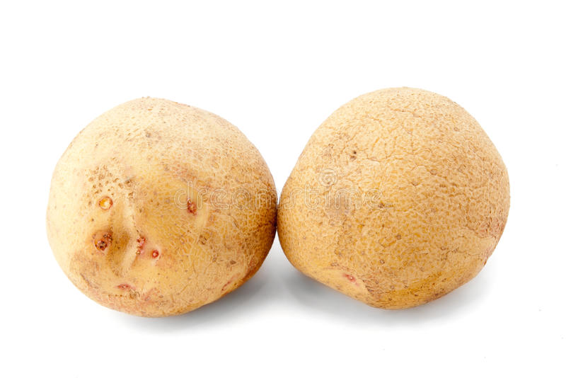 Download Two potatoes stock photo. Image of isolated, organic - 18547484
