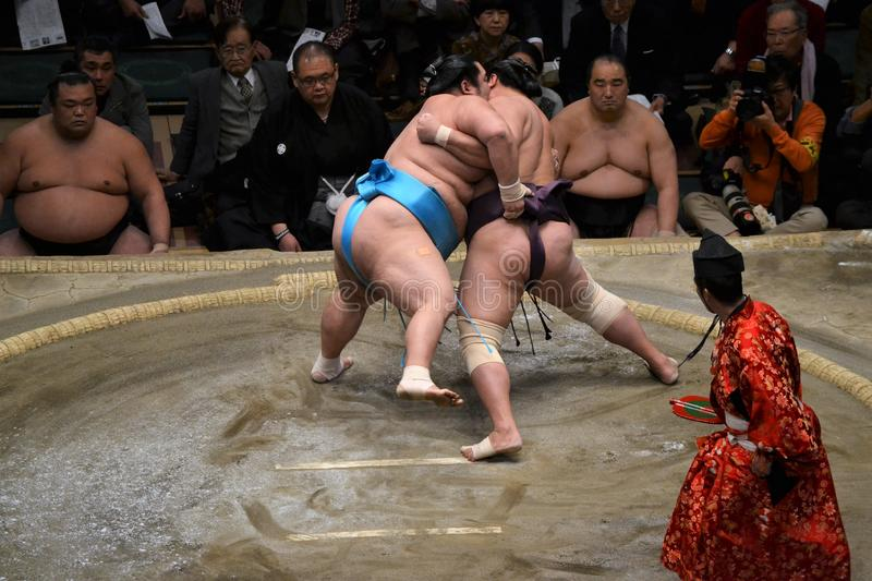 Two powerful men sumo wrestling stock photography